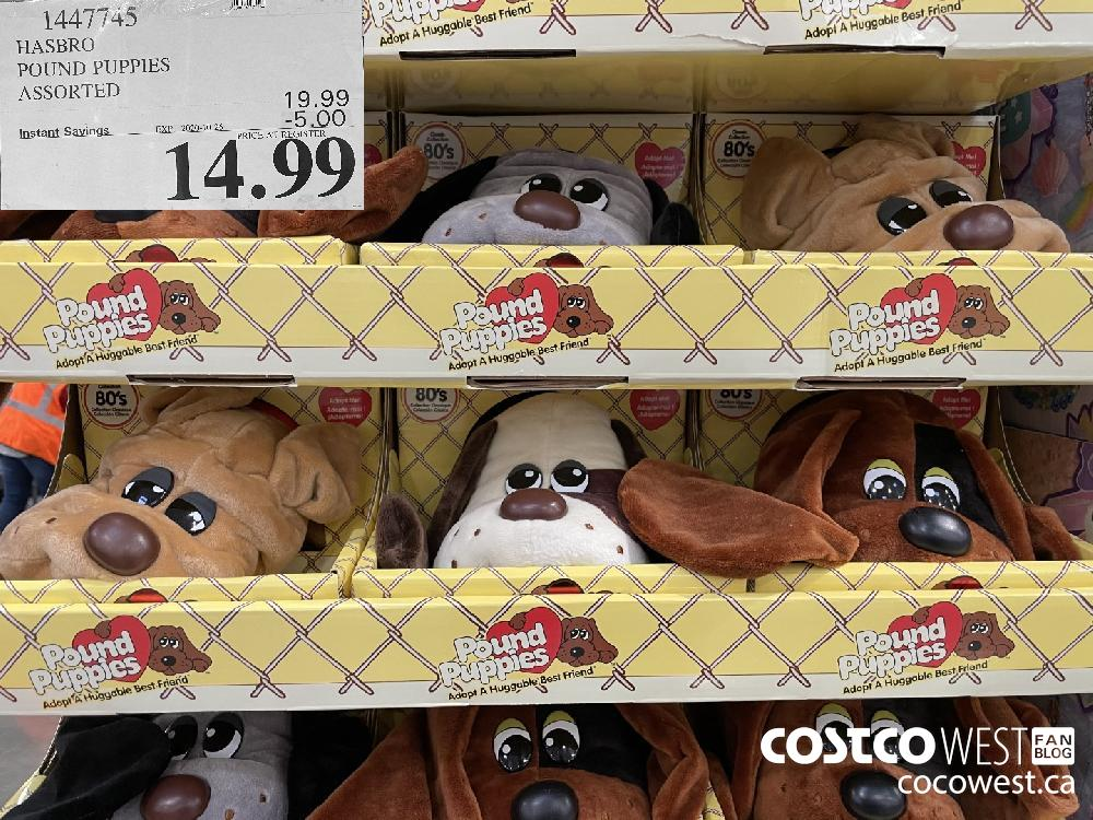 1447745 HASBRO POUND PUPPIES ASSORTED EXP. 2020-10-26 $14.99
