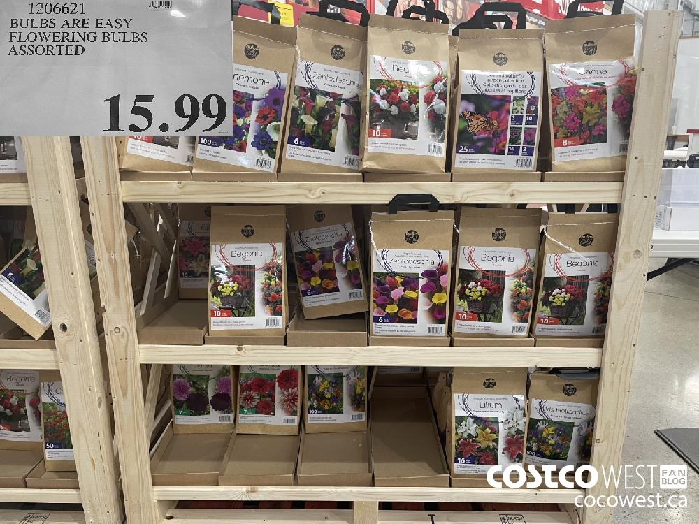 1206621 BULBS ARE EASY FLOWERING BULBS ASSORTED $15.99
