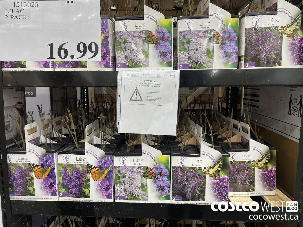 1513026 LILAC 2 PACK $16.99