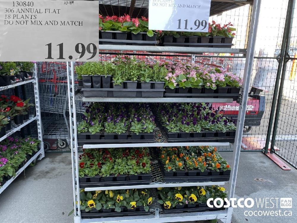 130840 306 ANNUAL FLAT 18 PLANTS DO NOT MIX AND MATCH $11.99